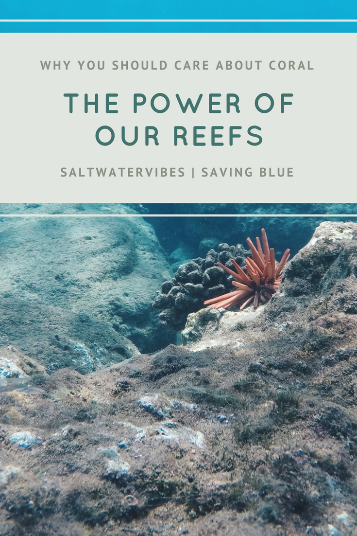 Change: Help Our Coral Reefs + SaltWaterVibes