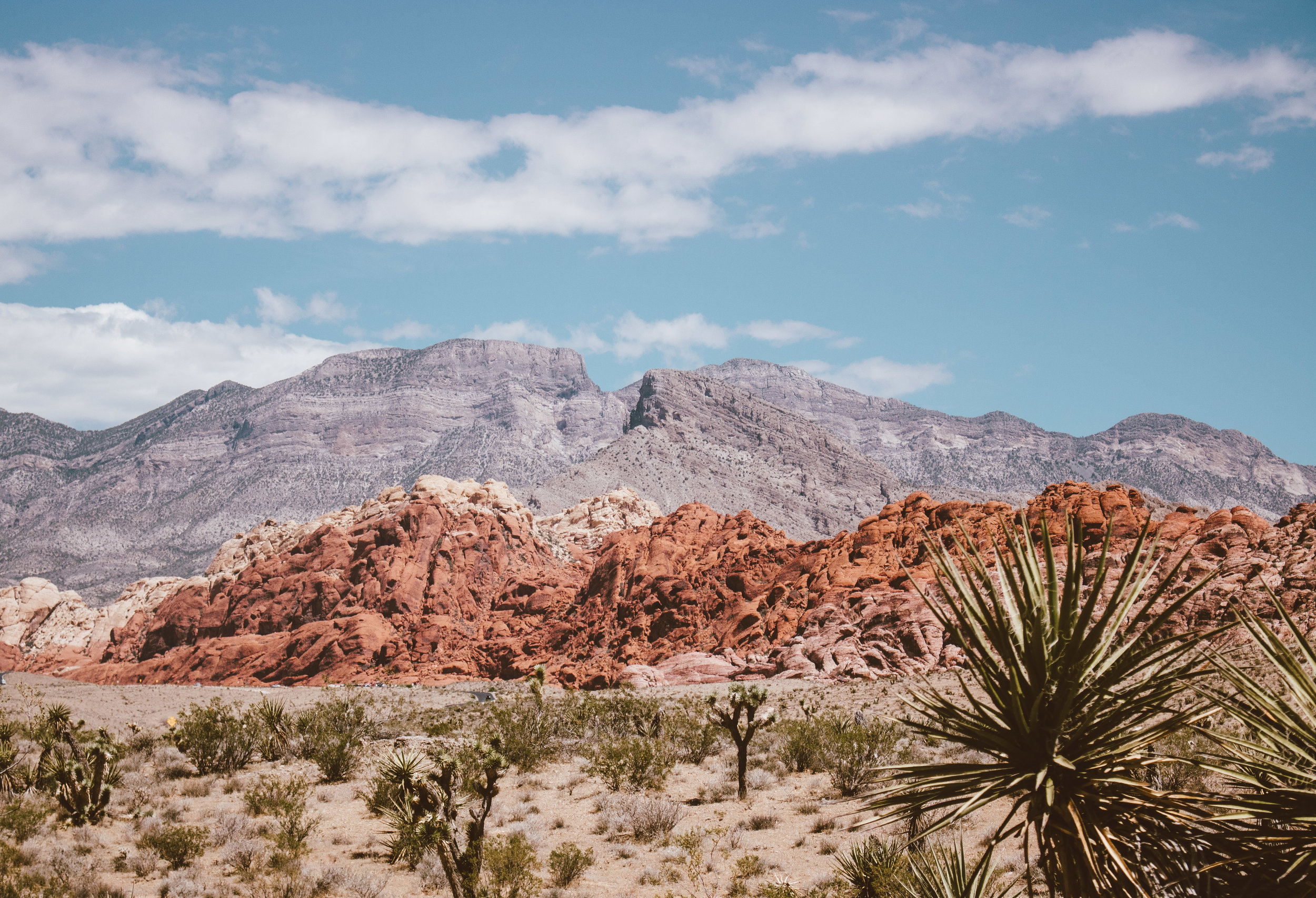 5 Things To Do Outside of Gambling Las Vegas | SaltWaterVibes