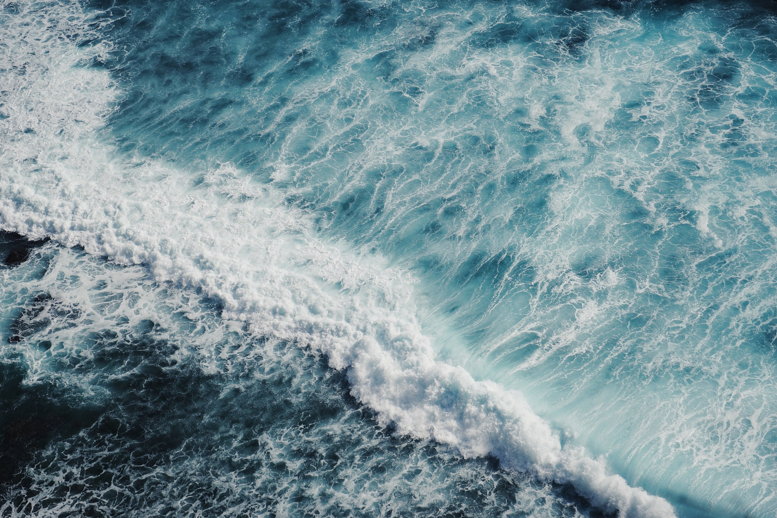 Caring: 5 Things You Can Do To Save The Ocean Today | SaltwaterVibes + Saving Blue