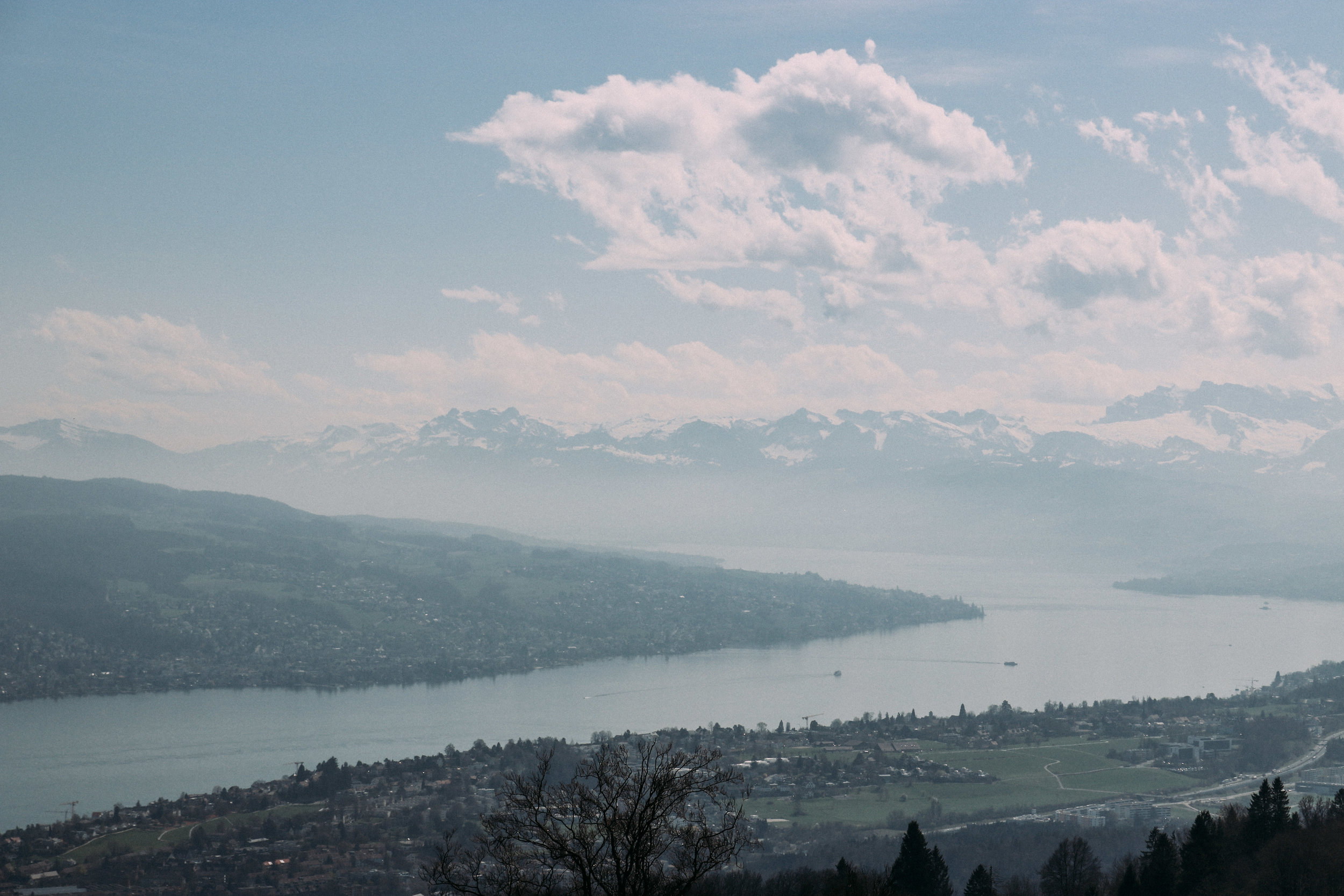 A Hike Up Mt. Uetliberg | SaltWaterVibes
