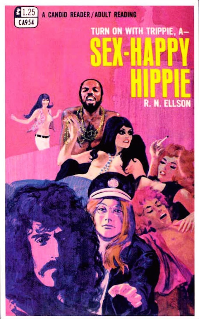 Hippy-book.jpg