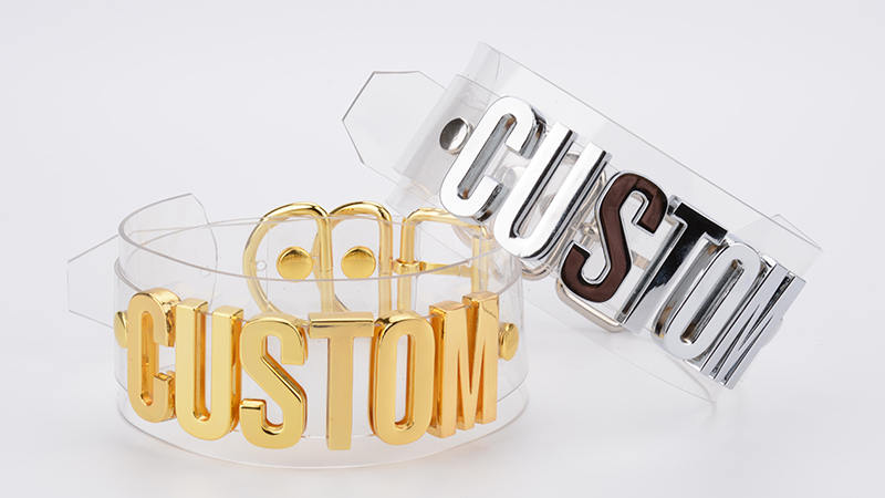 Customizable Clear PVC Choker  with the words of your choice!