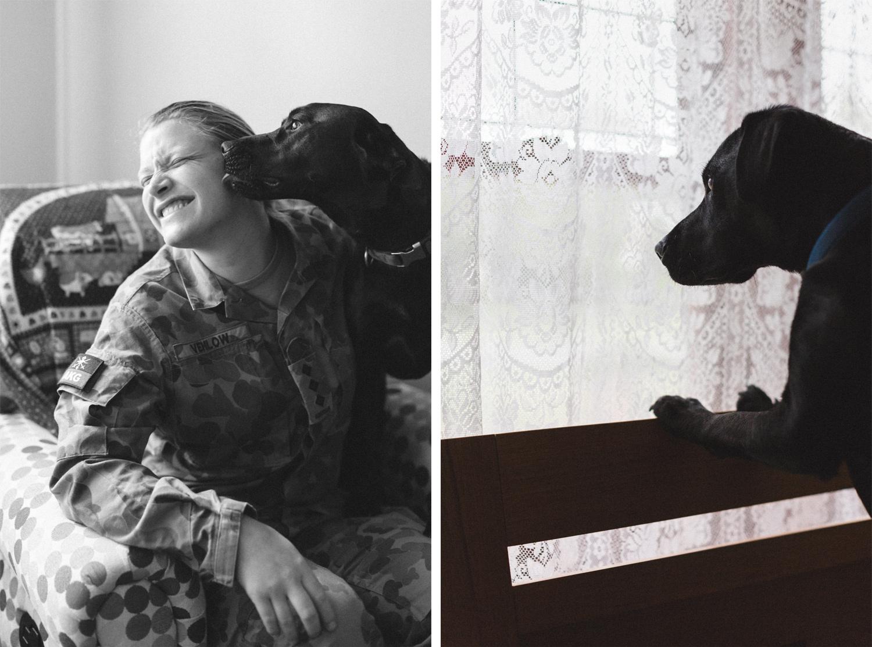 dog-portraits-at-home-bri-hammond-02.jpg