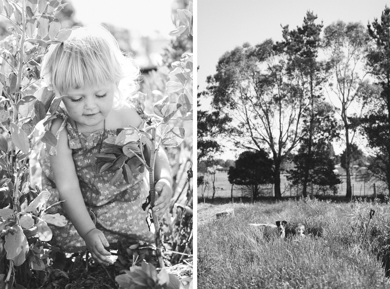 knagwood-farm-family-portraits-bri-hammond-03.jpg