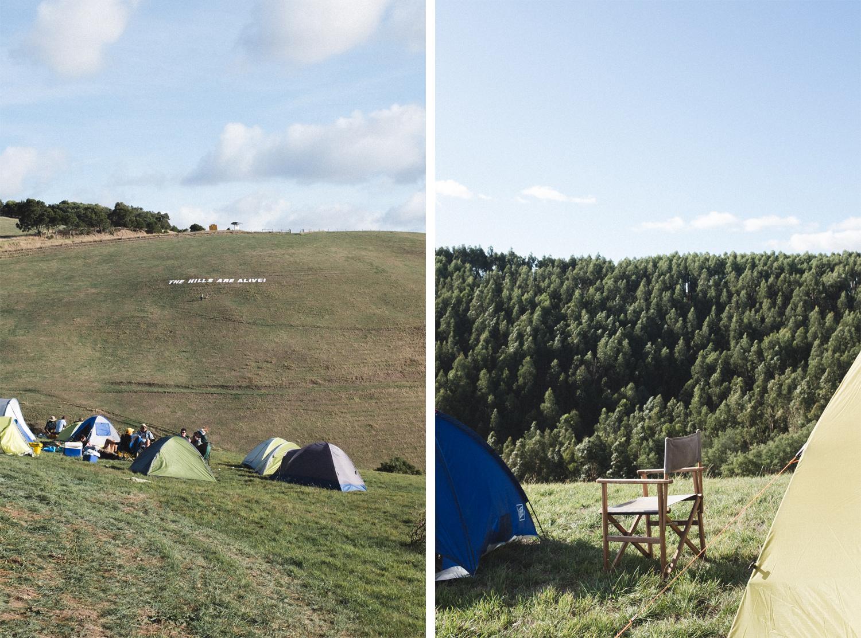 hills-are-alive-music-festival-bri-hammond-photography-03.jpg