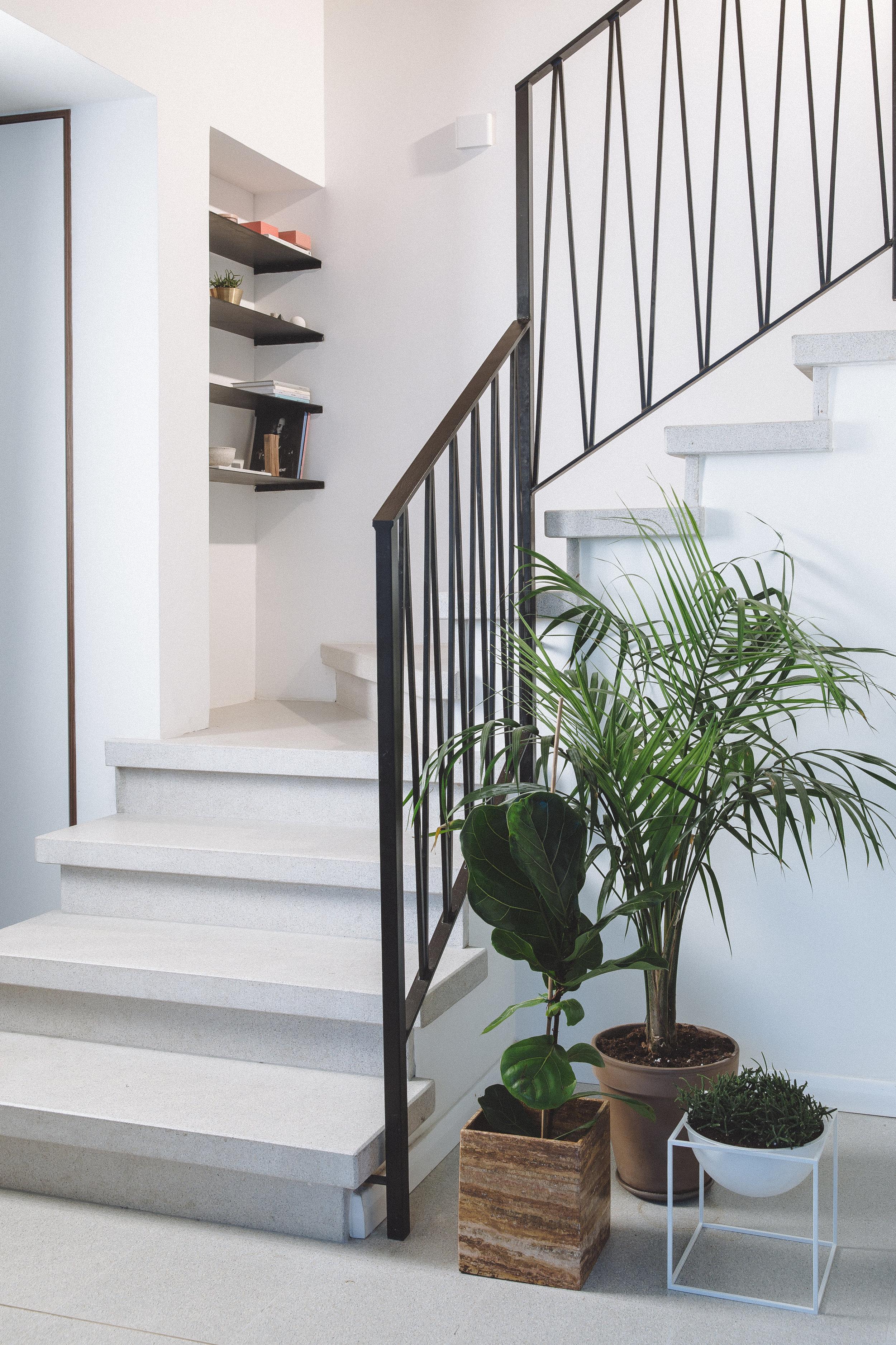 Steel railing. Terrazzo stairs. Greenery in interior design