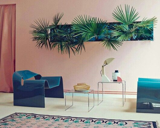 palm vibe in living space