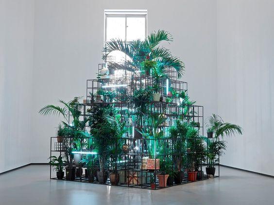 palm installation