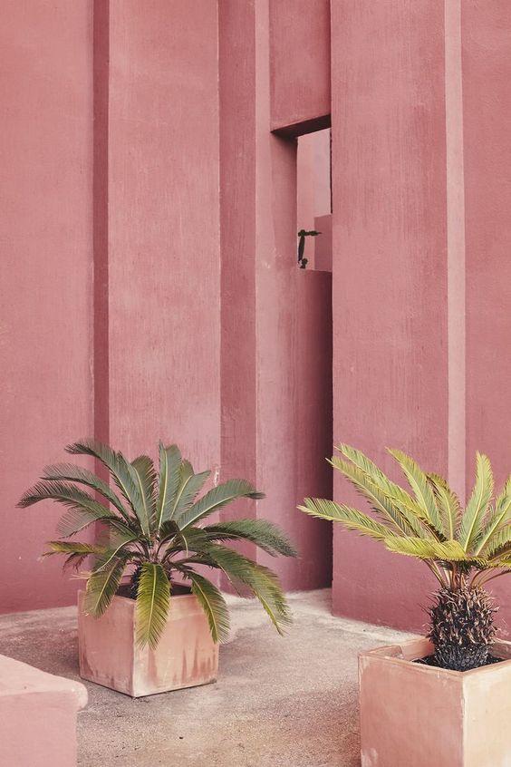 Ricardo Bofill- pink & palms