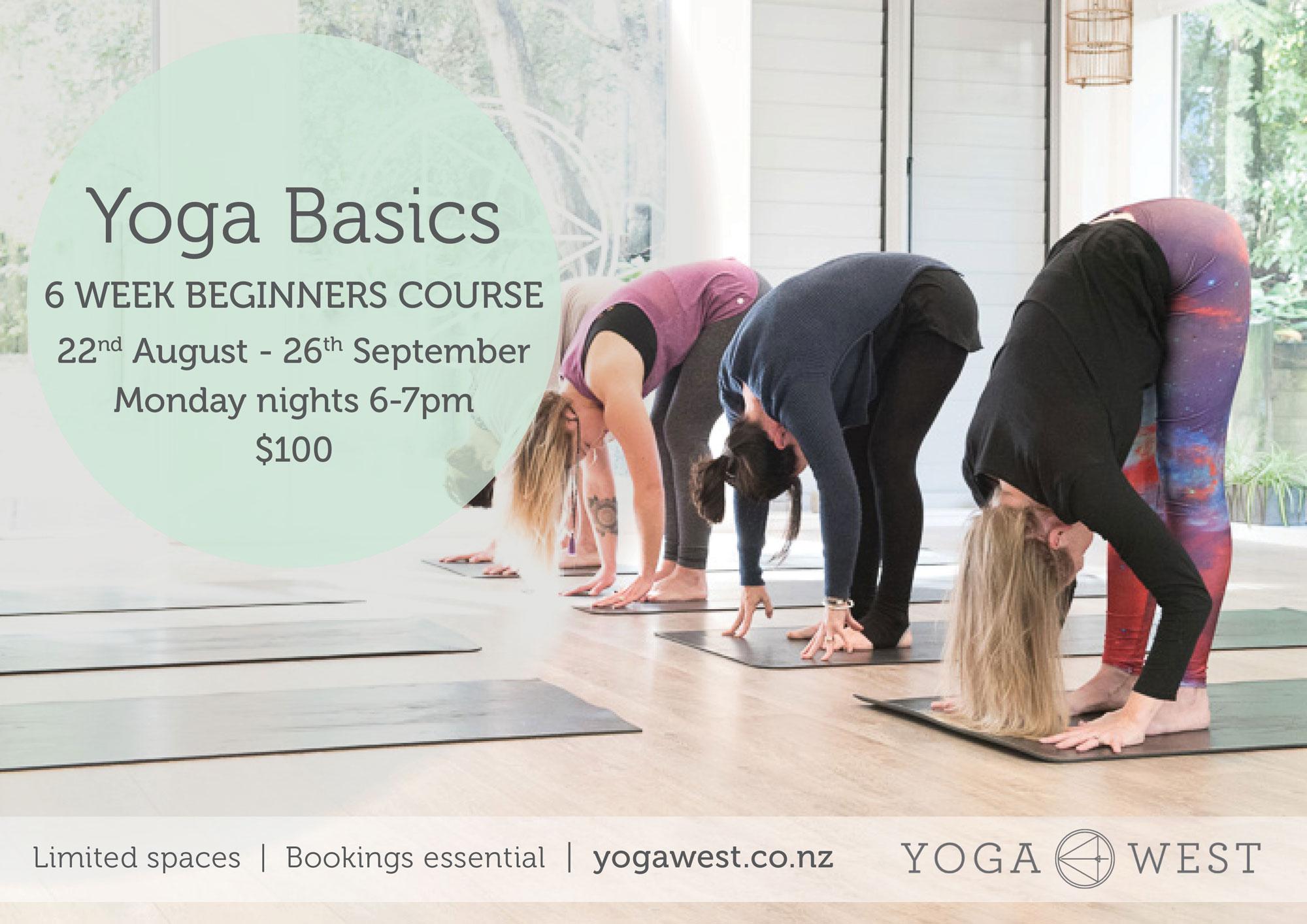 Yoga Basics Beginners Yoga Course