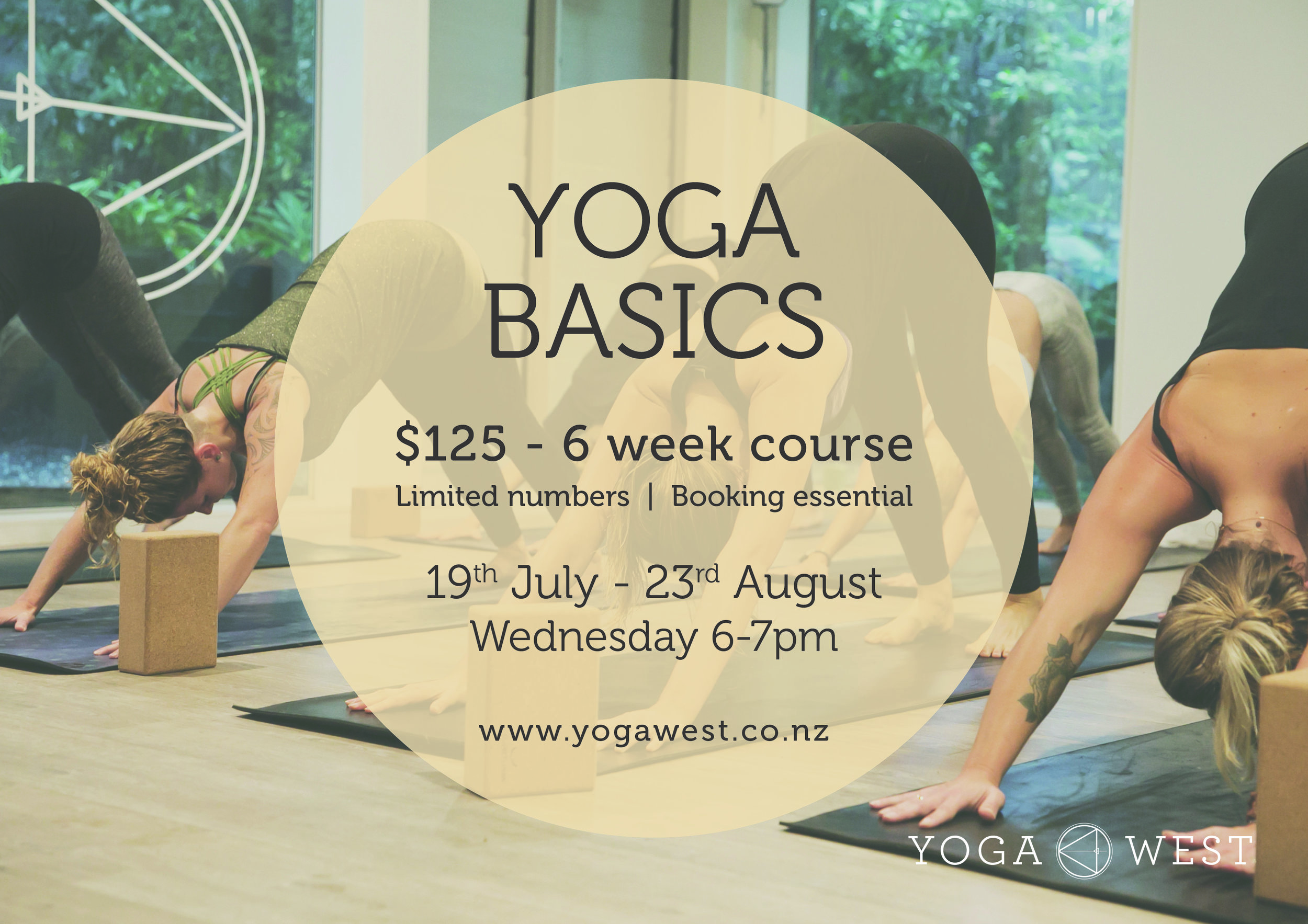2017 Yoga Basics_19Jul-23Aug.jpg