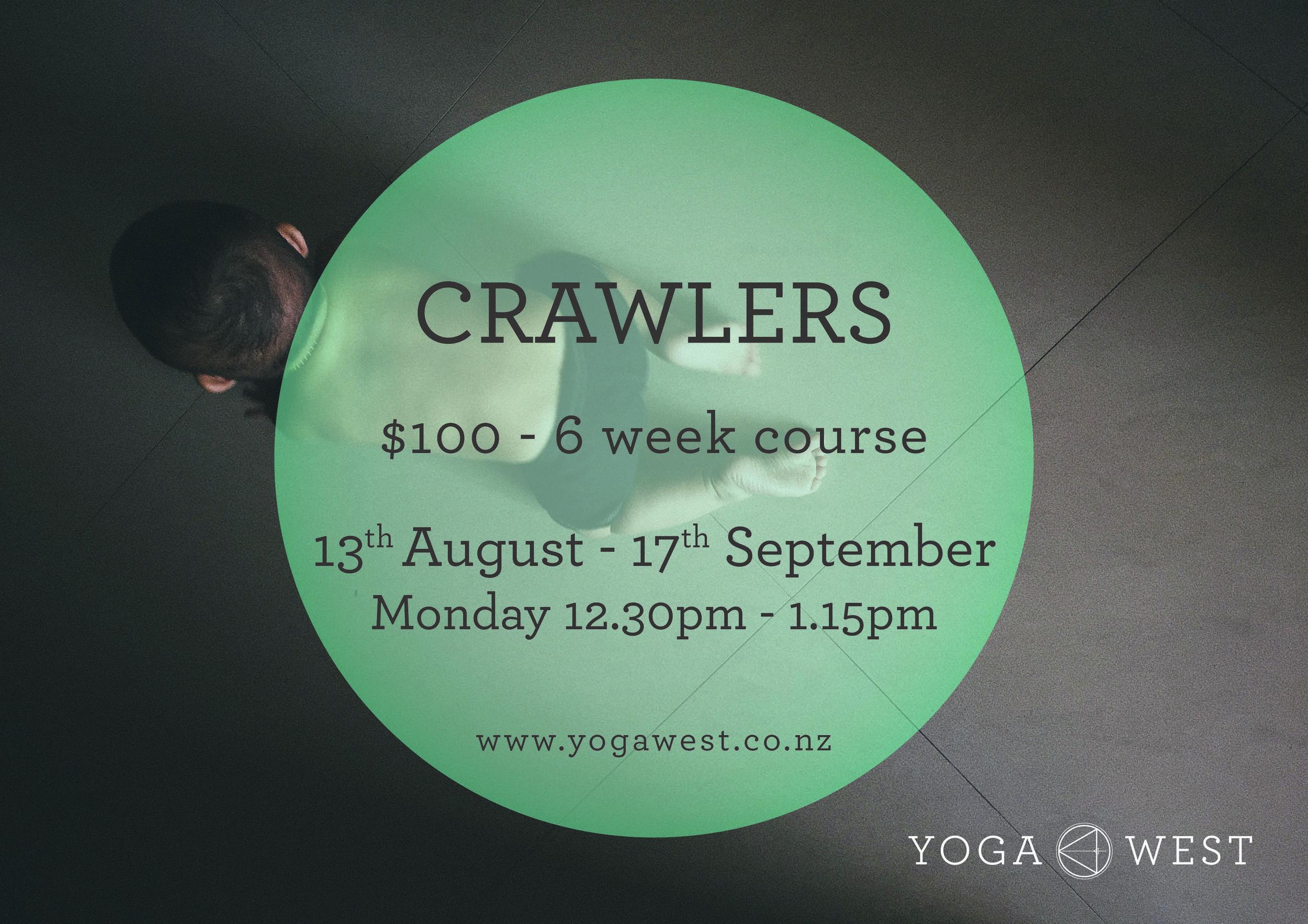crawlers term 3.jpeg