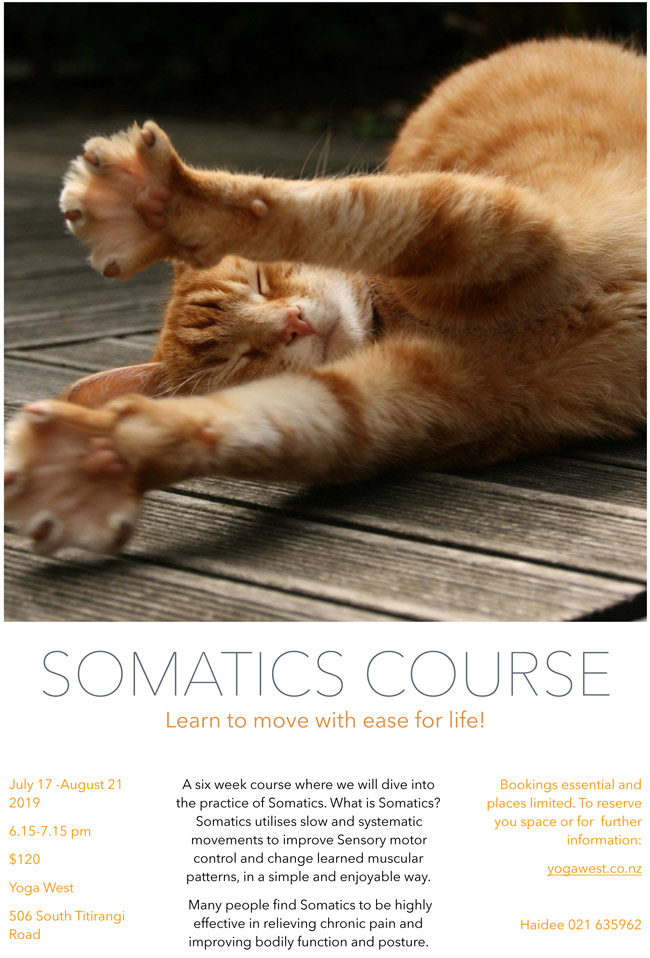 somatics-term-3-website.jpg