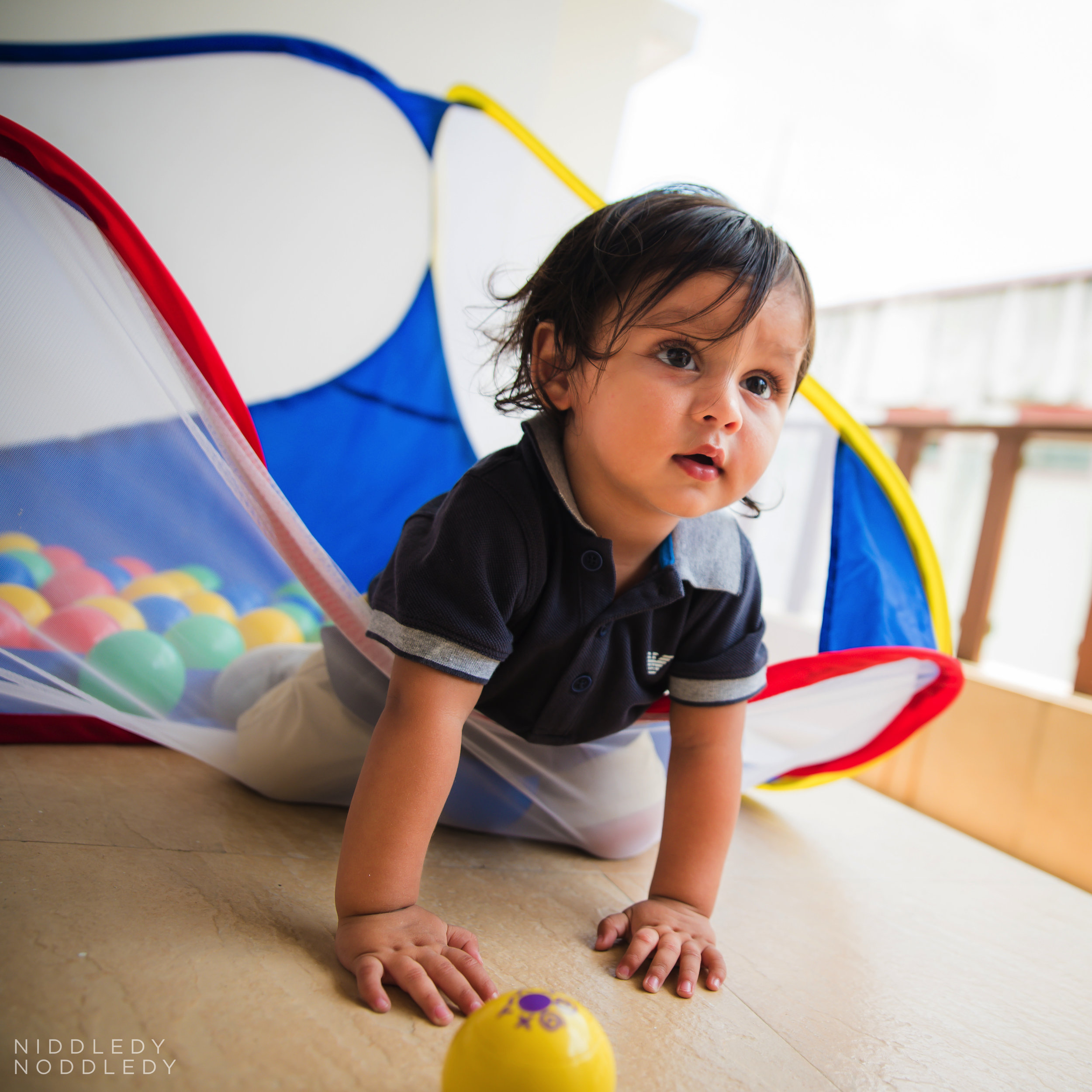 Avyaan's Day Photoshoot ❤ NiddledyNoddledy.com ~ Bumps to Babies Photography, Kolkata - 06.jpg