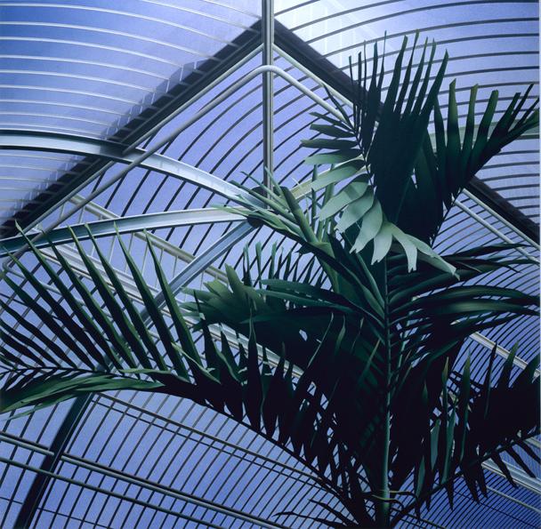 Palm House II
