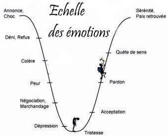 Echelle des émotions.jpg