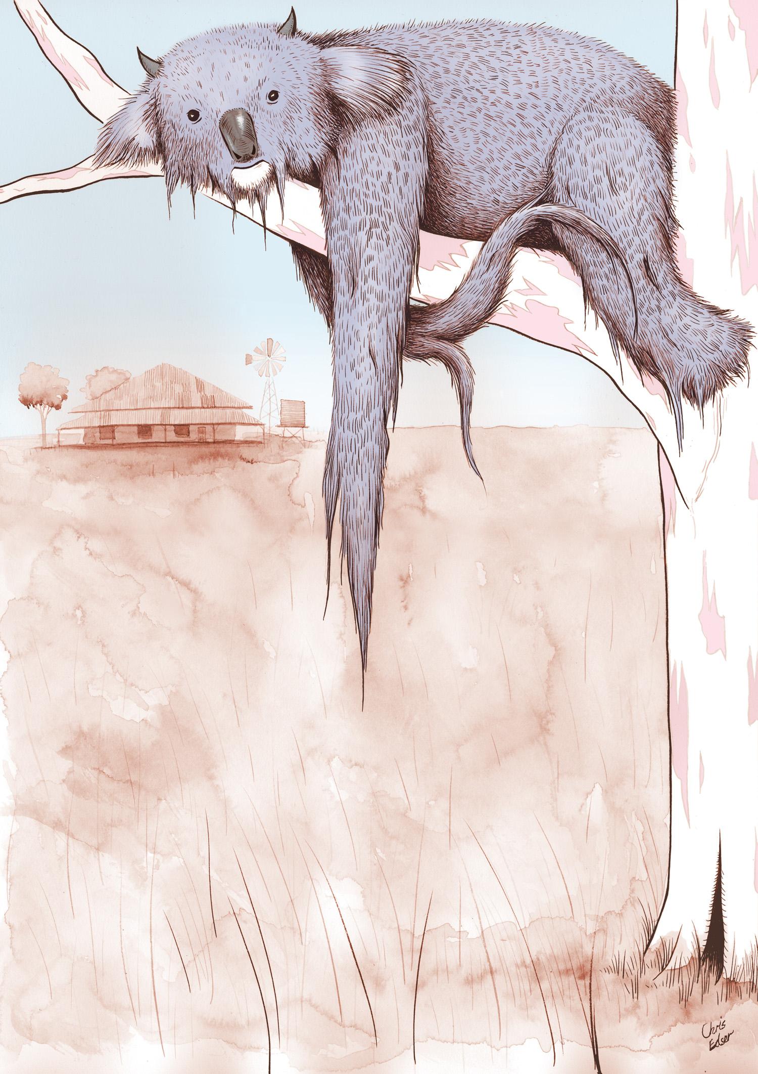 dropbear-koala-tree-01.jpg