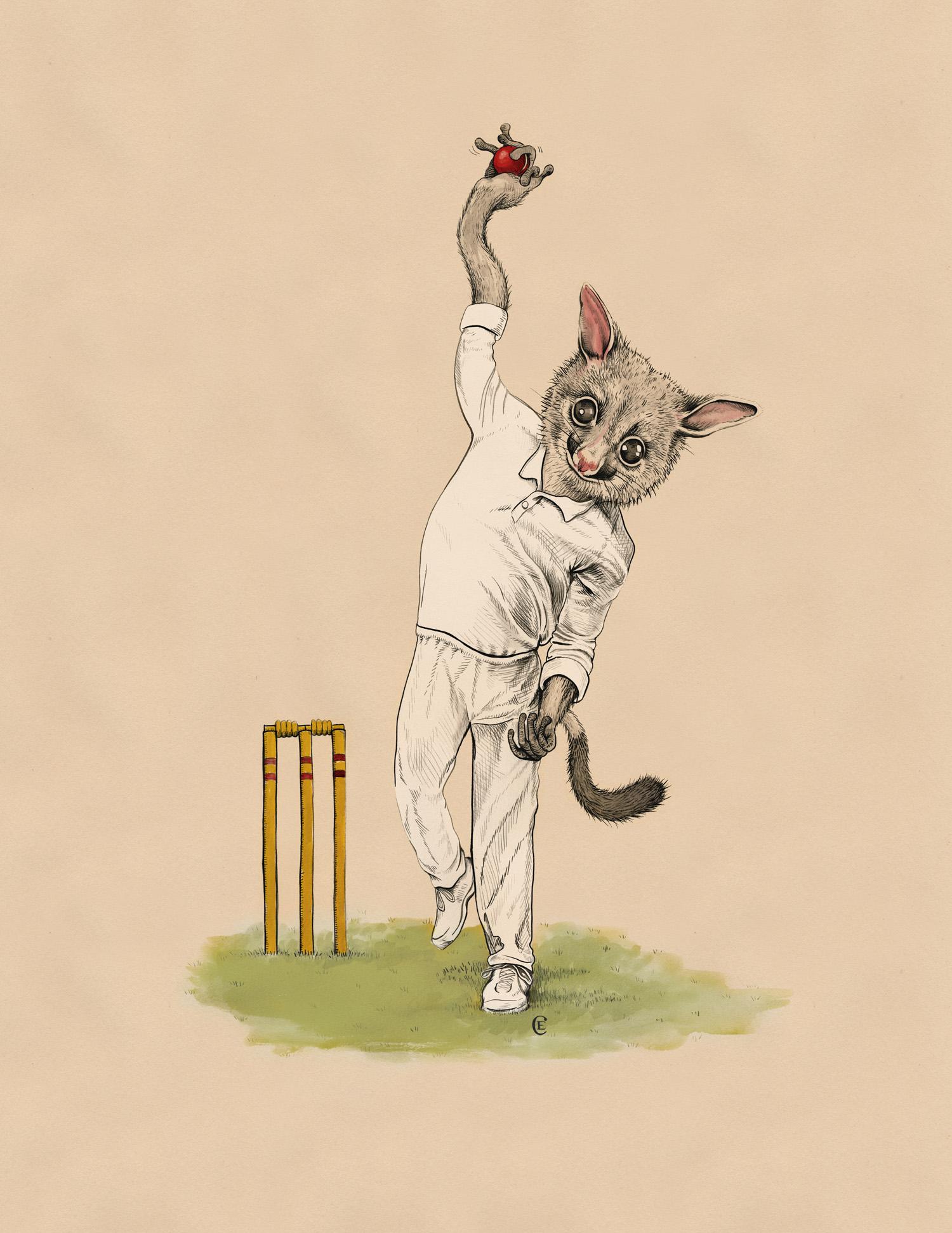 possum-spin-bowler-cricket.jpg