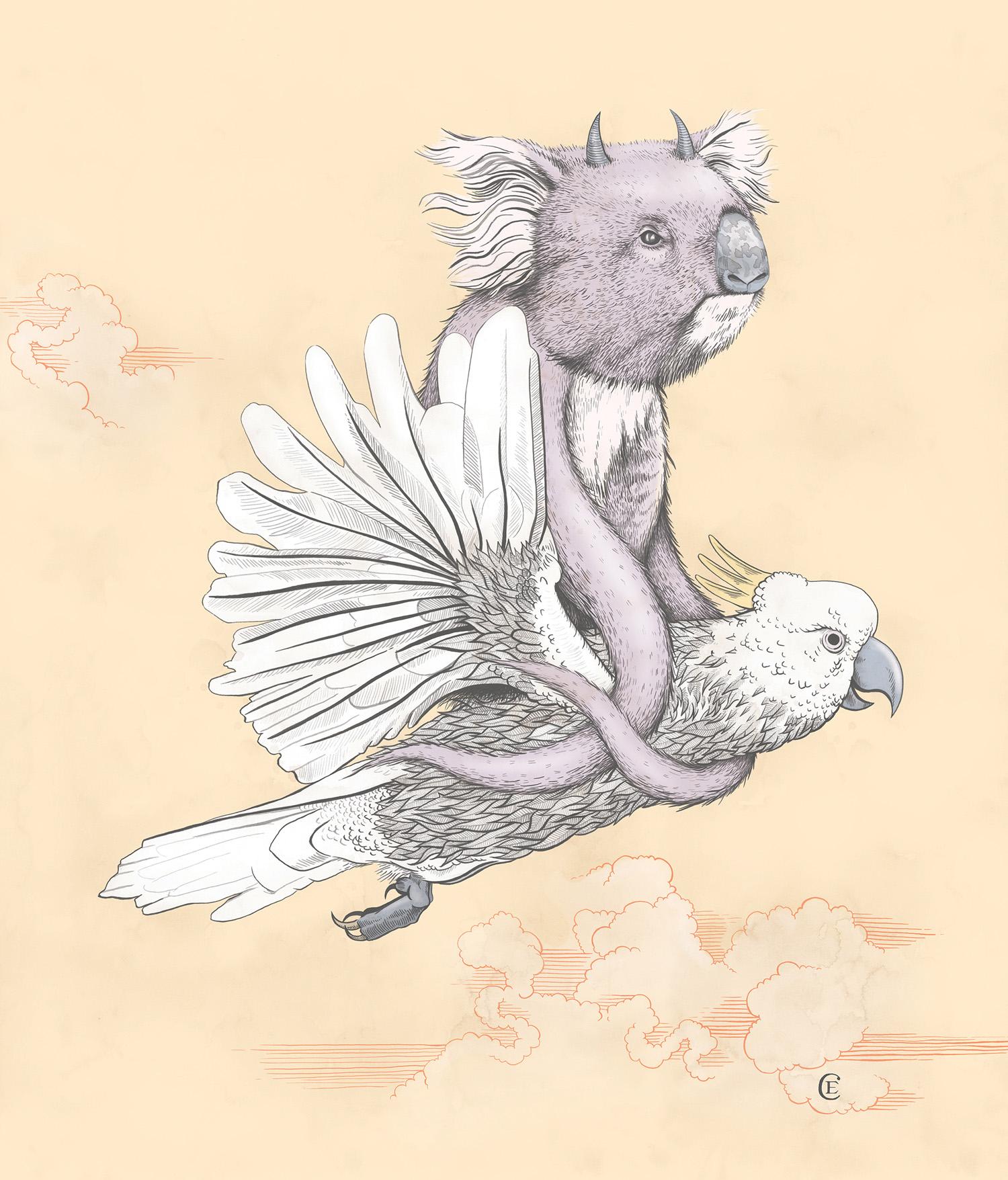 dropbear-koala-03.jpg