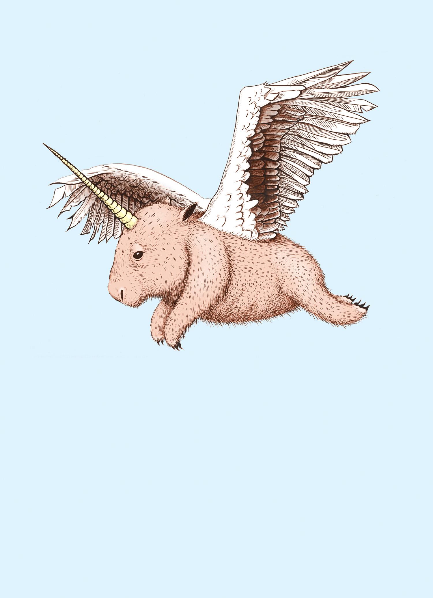 wombat-pegasus-unicorn.jpg