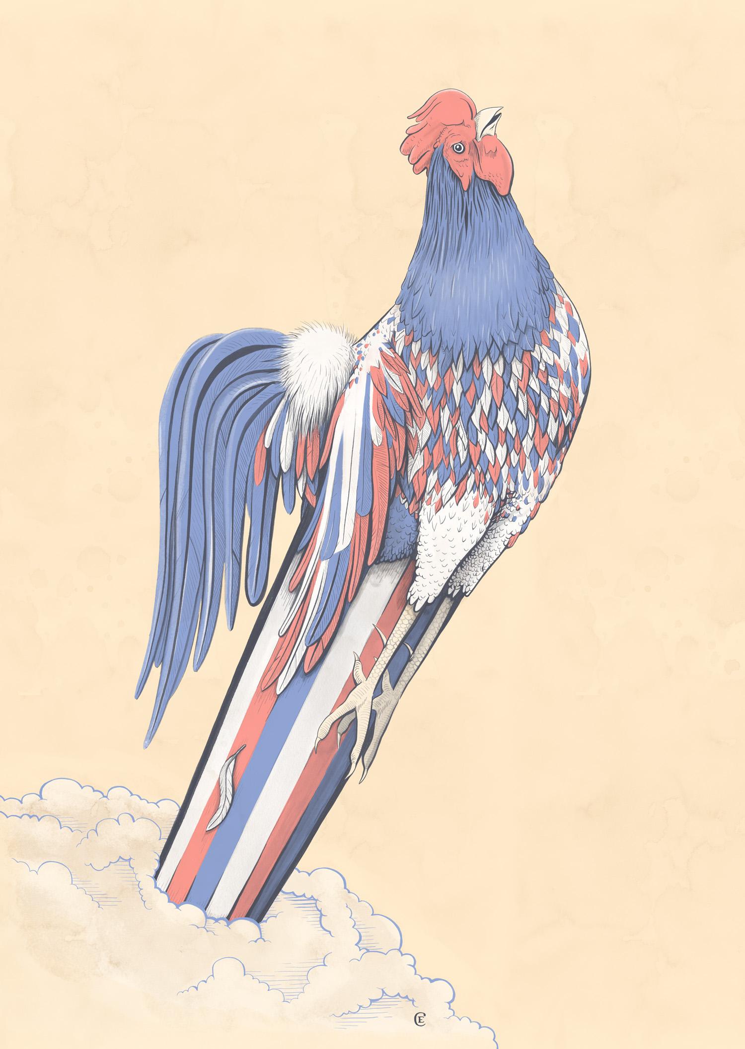 Chris-Edser-Gallic-Rooster-Lofficiel-Hommes.jpg