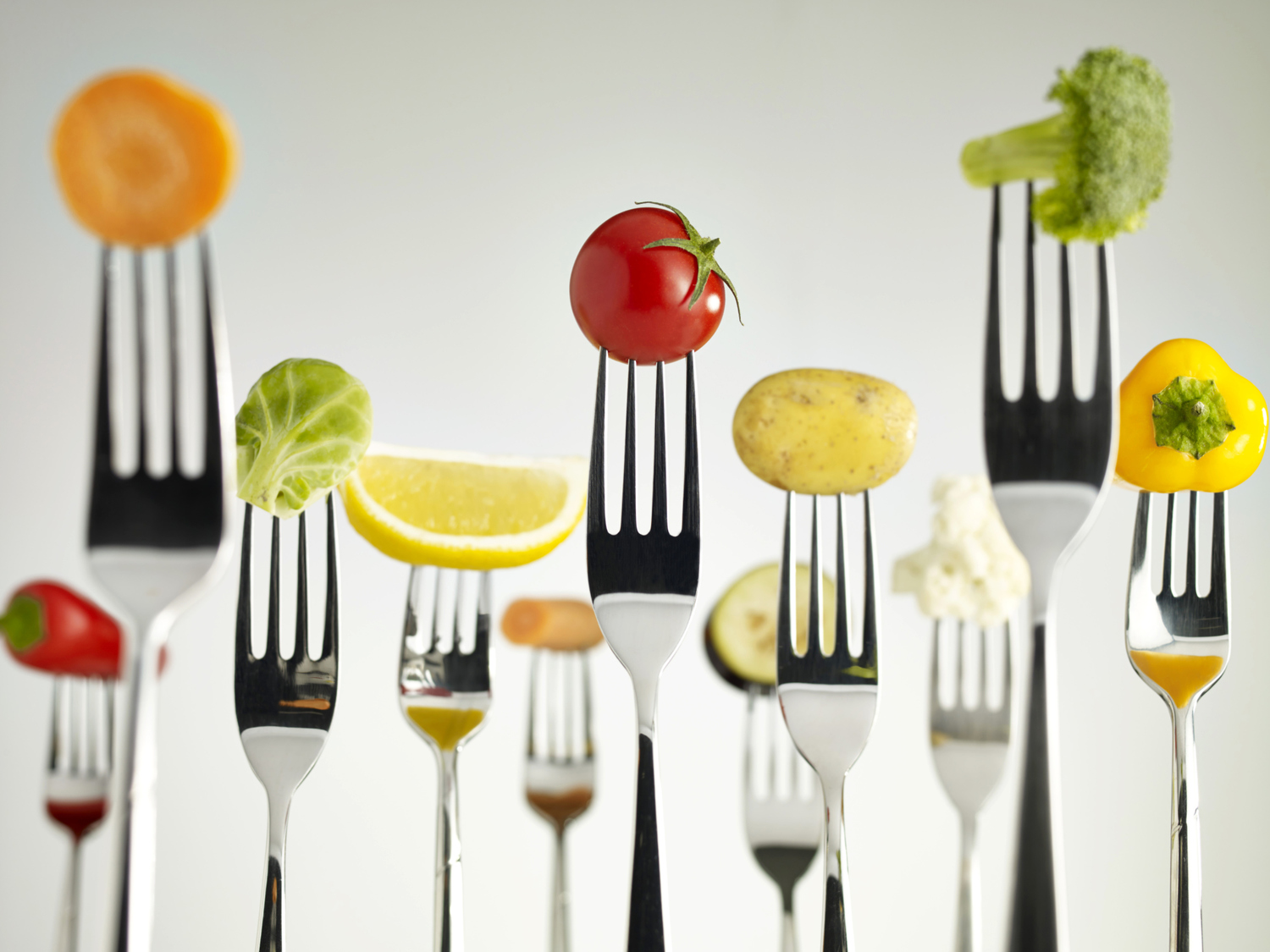 Projects Creative Nutrition Solutions