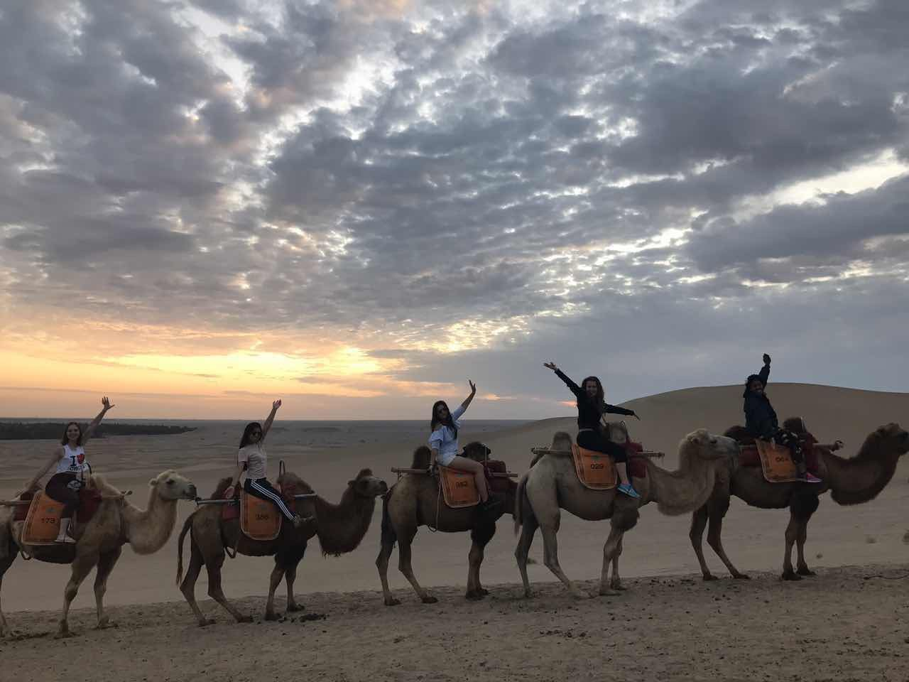 Students riding their camels to watch the sunset in the Gobi Desert during orientation week at The Beijing Center (Beijing, China)