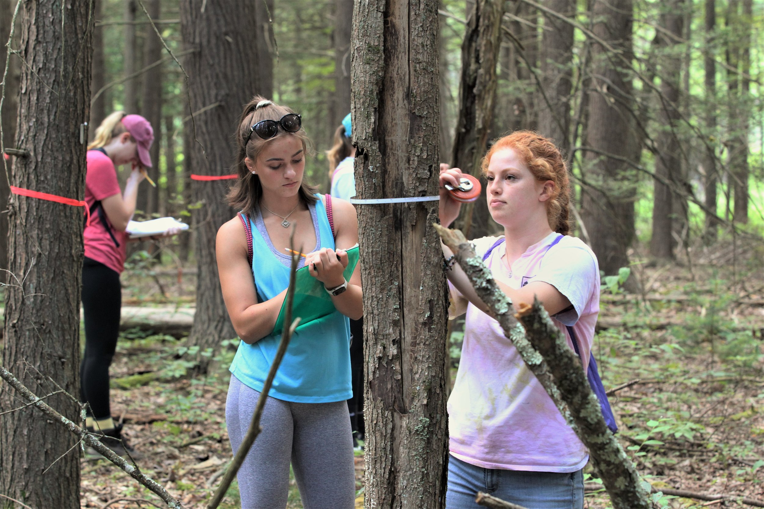 Students in The University of Scranton's Magis Honors Program in STEM participated in a community research project at the Lacawac Sanctuary in the Poconos to study the local deer population and their impact on trees (photo by The University of Scranton)