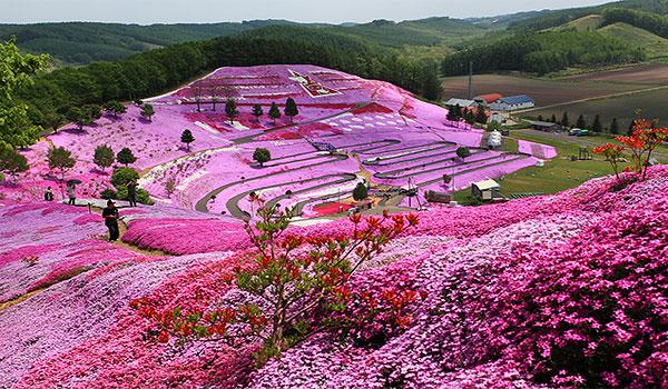 Island of Hokkaido 9days