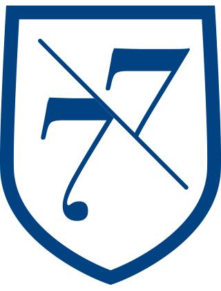 7V7.png