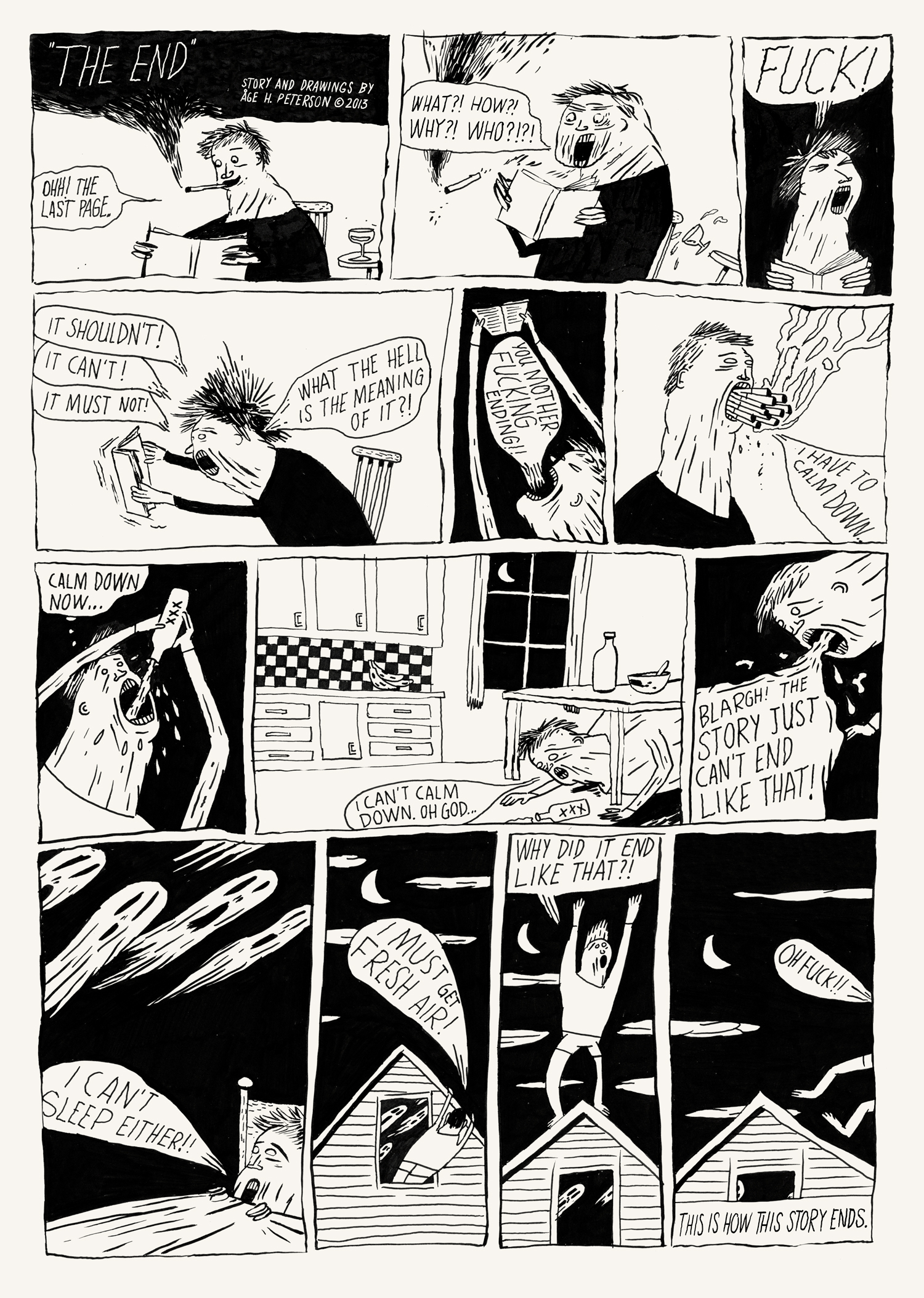 The End  (July, 2013). A one page comic about the end and published in the comic book,  Confusion Comic.