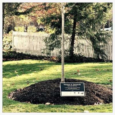 Chagrin River Watershed Partners President Greg Studen was on hand at the dedication ceremony of a red oak tree in honor of the late Tom Quintrell. Mr. Studen shared his reflections about Mr. Quintrell's life of dedication and passion for preserving the Chagrin Valley.
