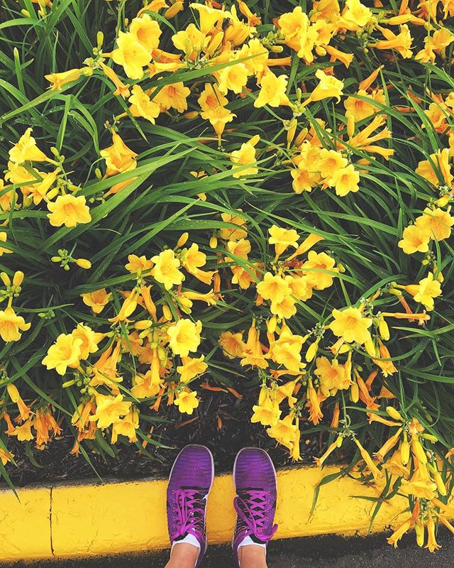 """I ran home in the moonlight with firm strides; for the sun-love made me strong."" 🌼 — John Muir // Fresh steps into the new year—although Timehop reminded me this is just a remix of a past new year's post. Swap out sneakers and leggings for high heals and lace, the US for China, subtract five years and it's *basically* the same photo. #StateOfEvolution"