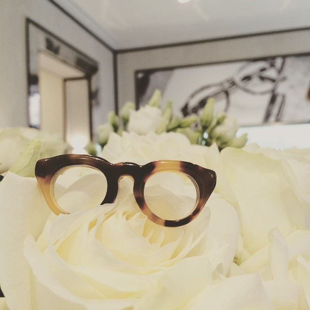Cute little glasses found his spot in the roses.