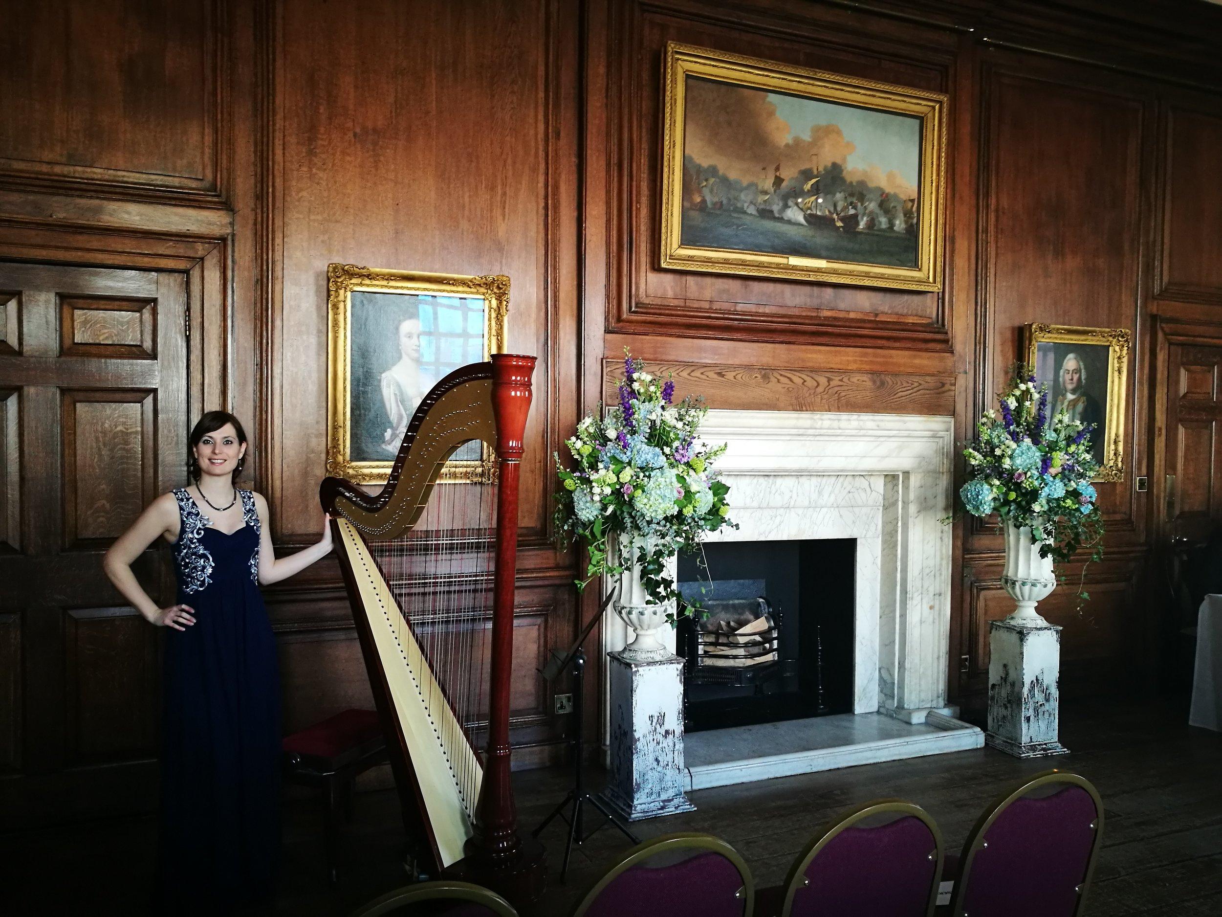Silver Stage Harpist.jpg