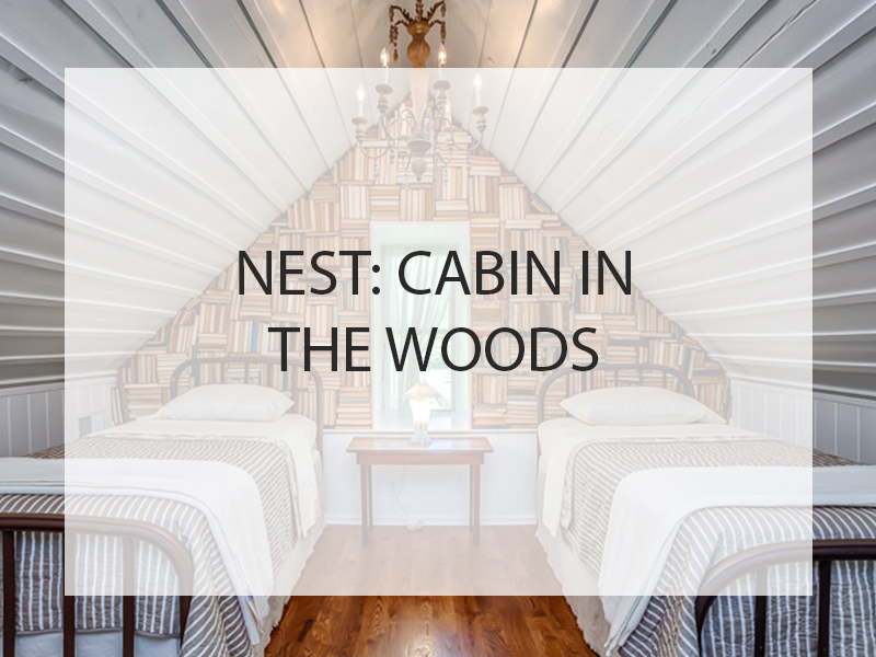Nest: Cabin in the Woods