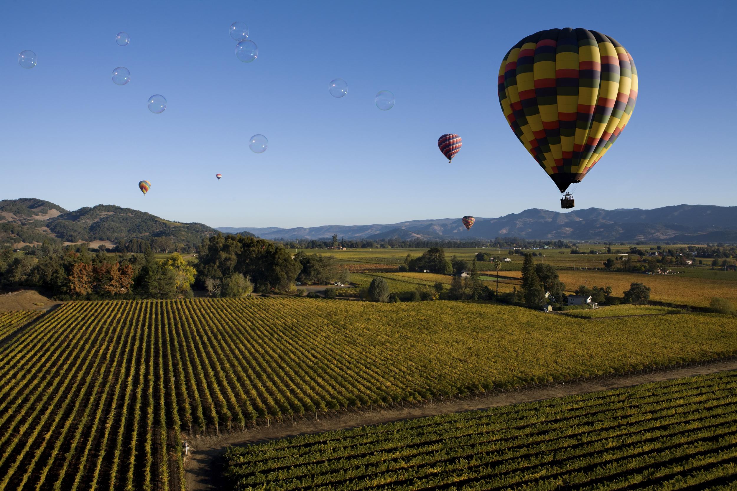 Hot Air Balloon Napa Valley