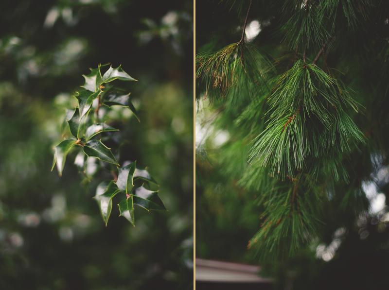 mill-at-fine-creek-wedding-0003