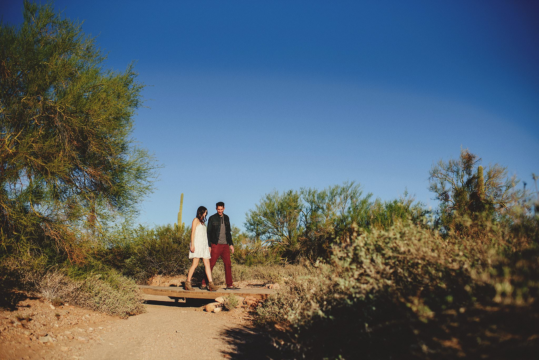superstition-mountains-desert-engagement-photos-0004.jpg