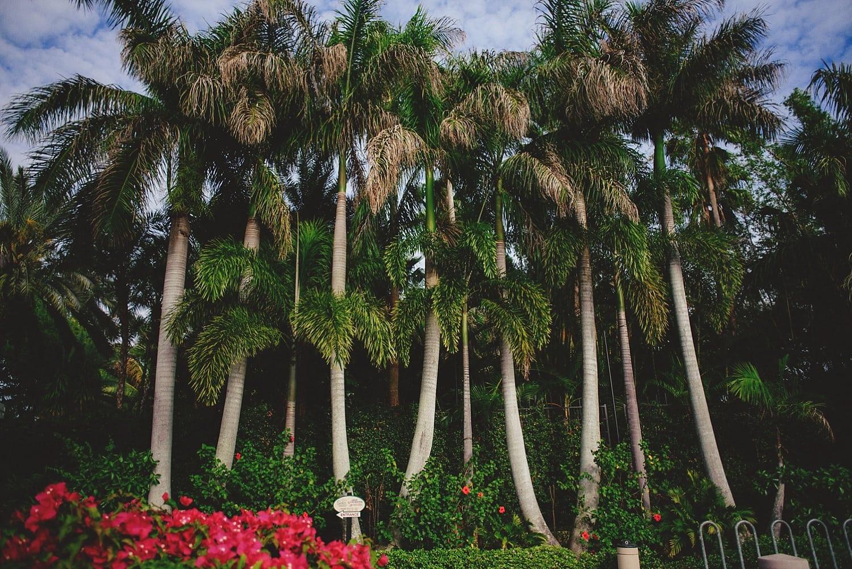sunken-gardens-romantic-wedding-photos-0033.JPG