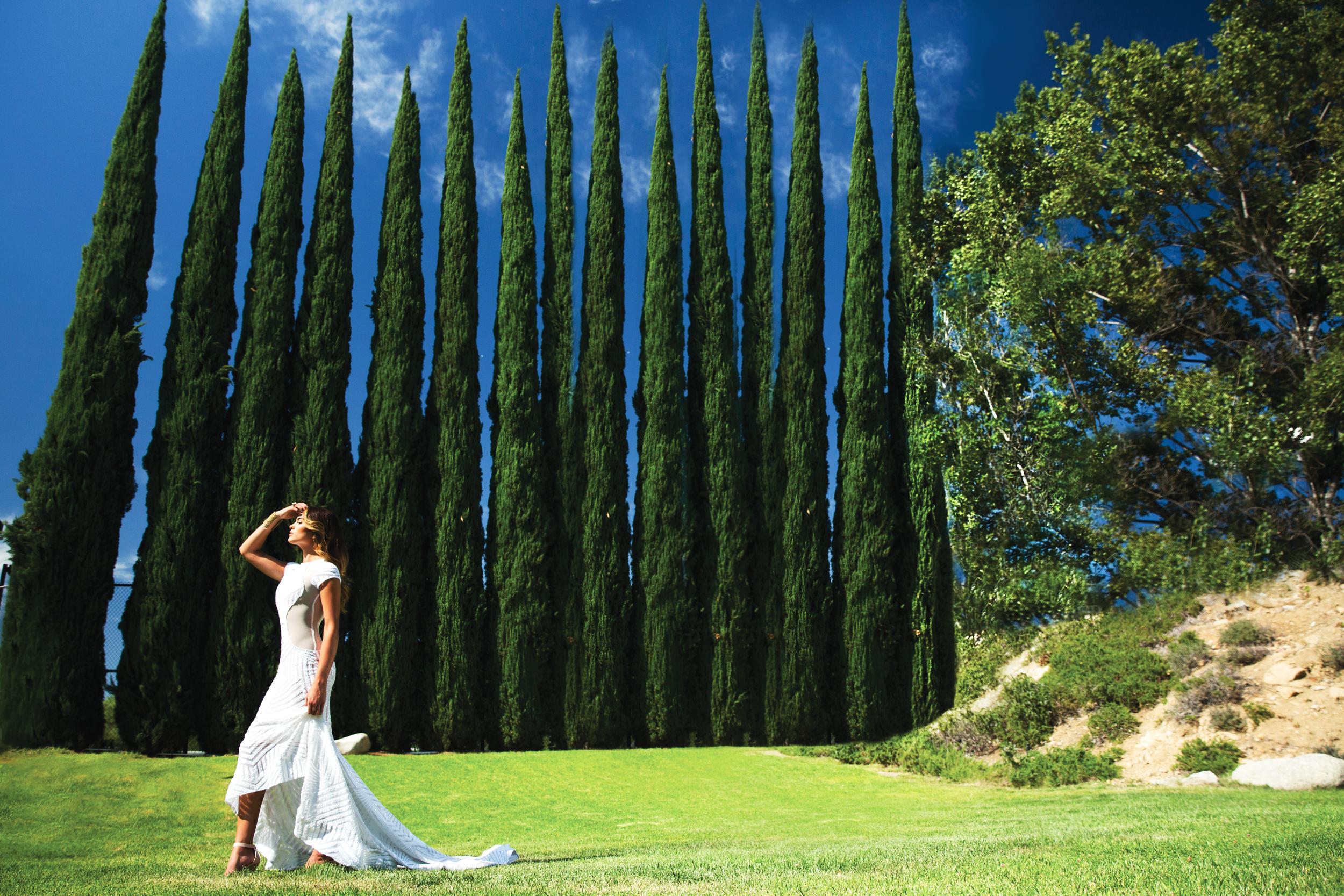 Stella Costello: Secret Garden