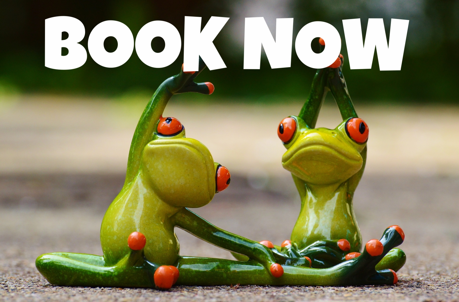 booking frogs