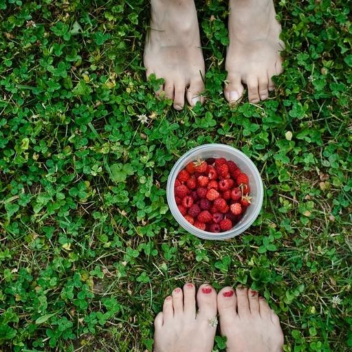 Website_Raspberries.jpg