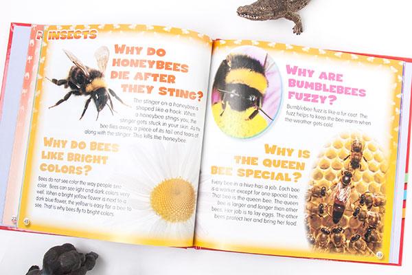 xwhyz-bees-72w.jpg