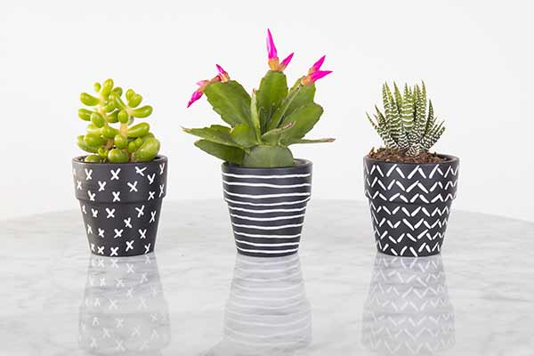 drawing on flower pots