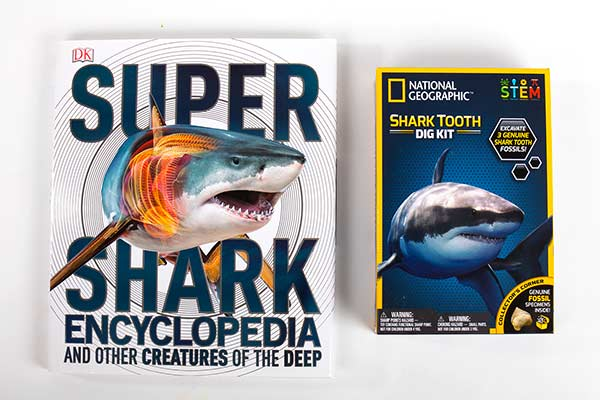 super-shark-book-and-fossil dig kit