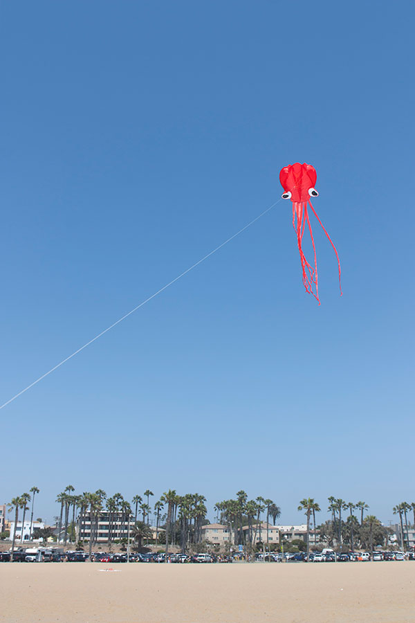kite-on-the-beach_web.jpg