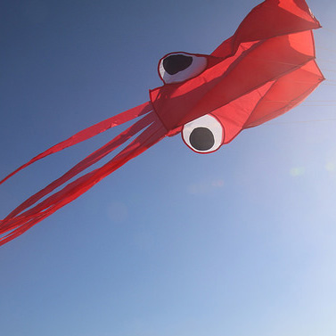 kite-square-web.jpg