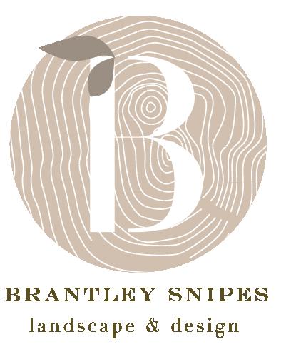 BrantleySnipesLogo_.png