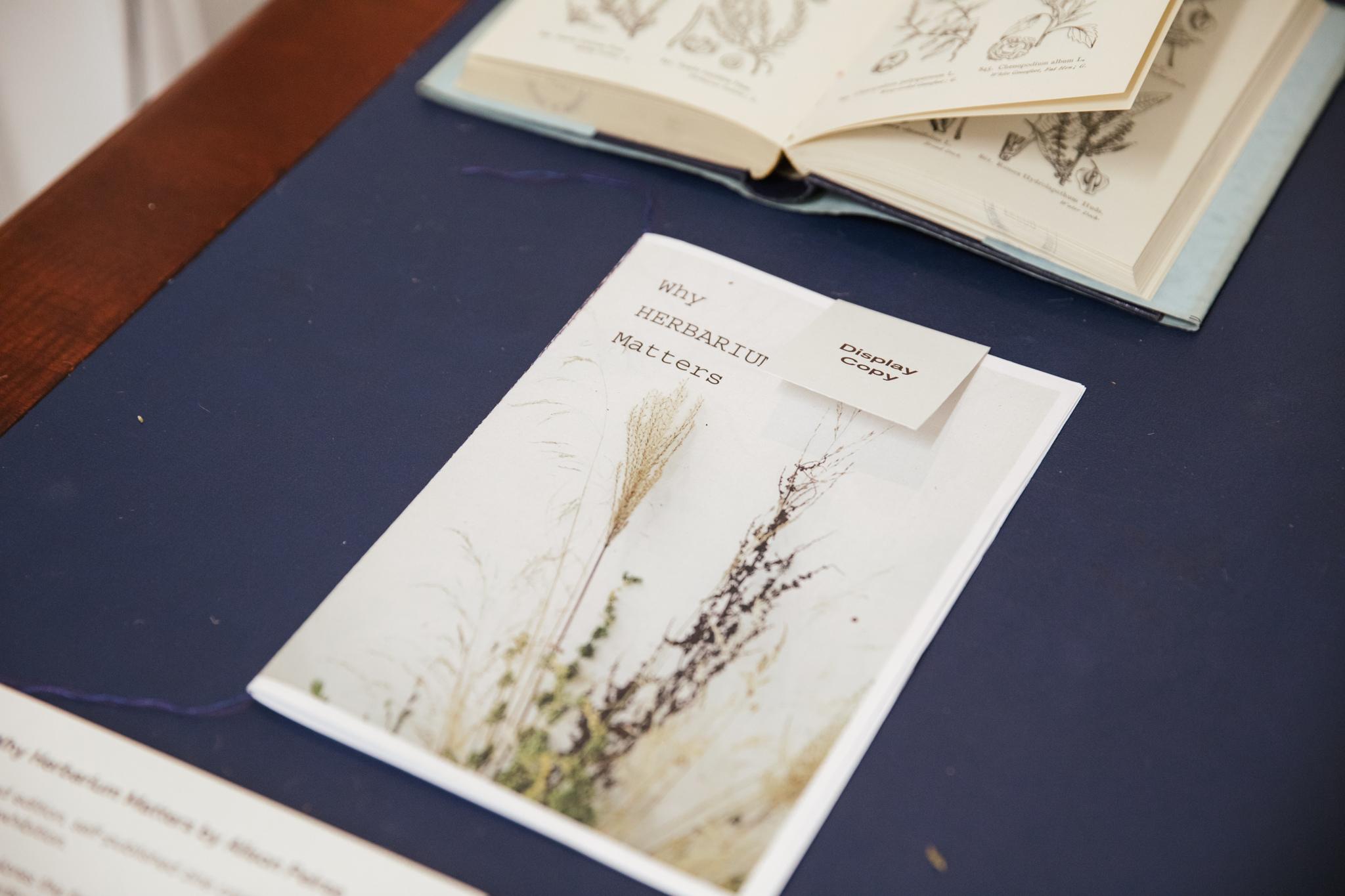 Herbarium_Joanne-Crawford-6807.JPG